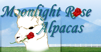 Moonlight Rose Alpacas